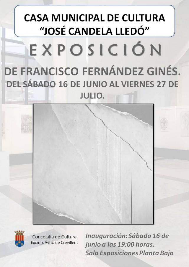 EXPOSICIÓN DE FRANCISCO FERNÁNDEZ GINÉS.