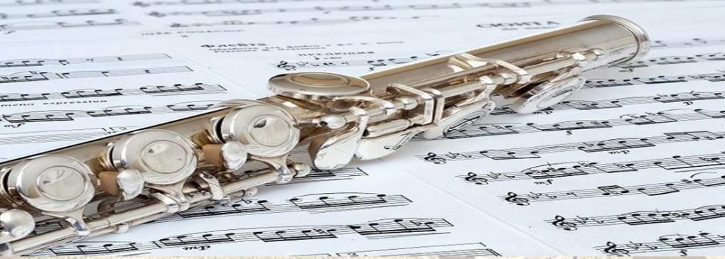 CONCIERTO DIDÁCTICO PARA ESCOLARES, A CARGO DE LA BANDA DE EDUCANDOS DE LA SOCIEDAD UNIÓN MUSICAL DE CREVILLENT.
