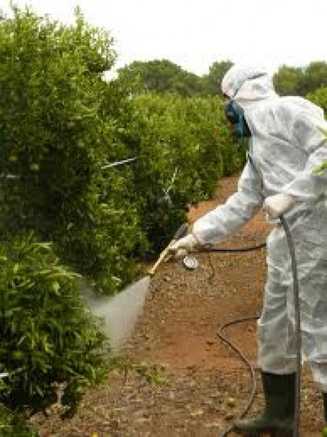 Agricultura inicia  un curso de manipulador de plaguicidas de uso fitosanitario