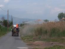 La Concejalía de Sanidad organiza unas charlas informativas sobre el mosquito tigre