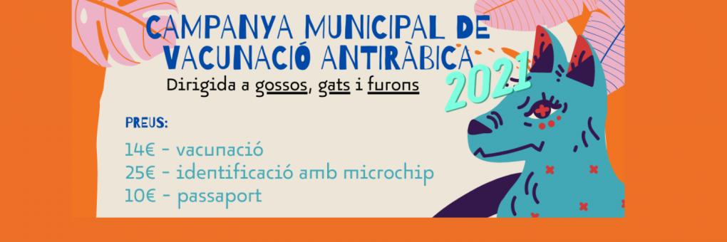 En marxa la campanya de vacunació antirràbica i d'identificació amb microxip per a gossos, gats i furons